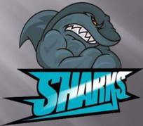 Fc Sharks
