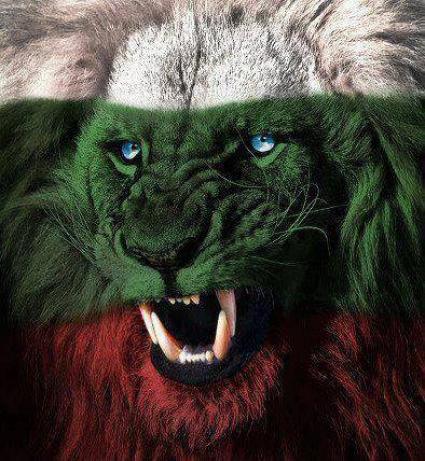Фк Лъвове