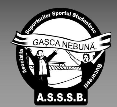 CS Sportul Ilfov - Echipă