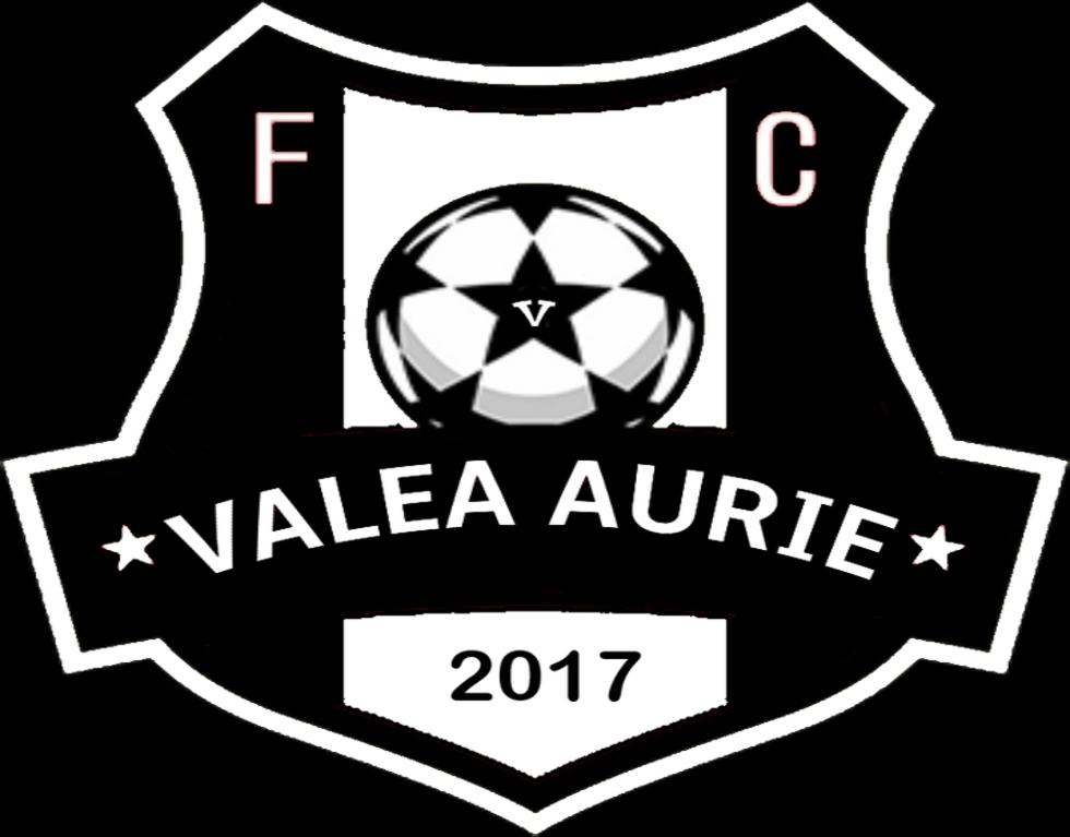 FC Valea Aurie - Echipă
