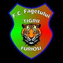 FC. Fagetului