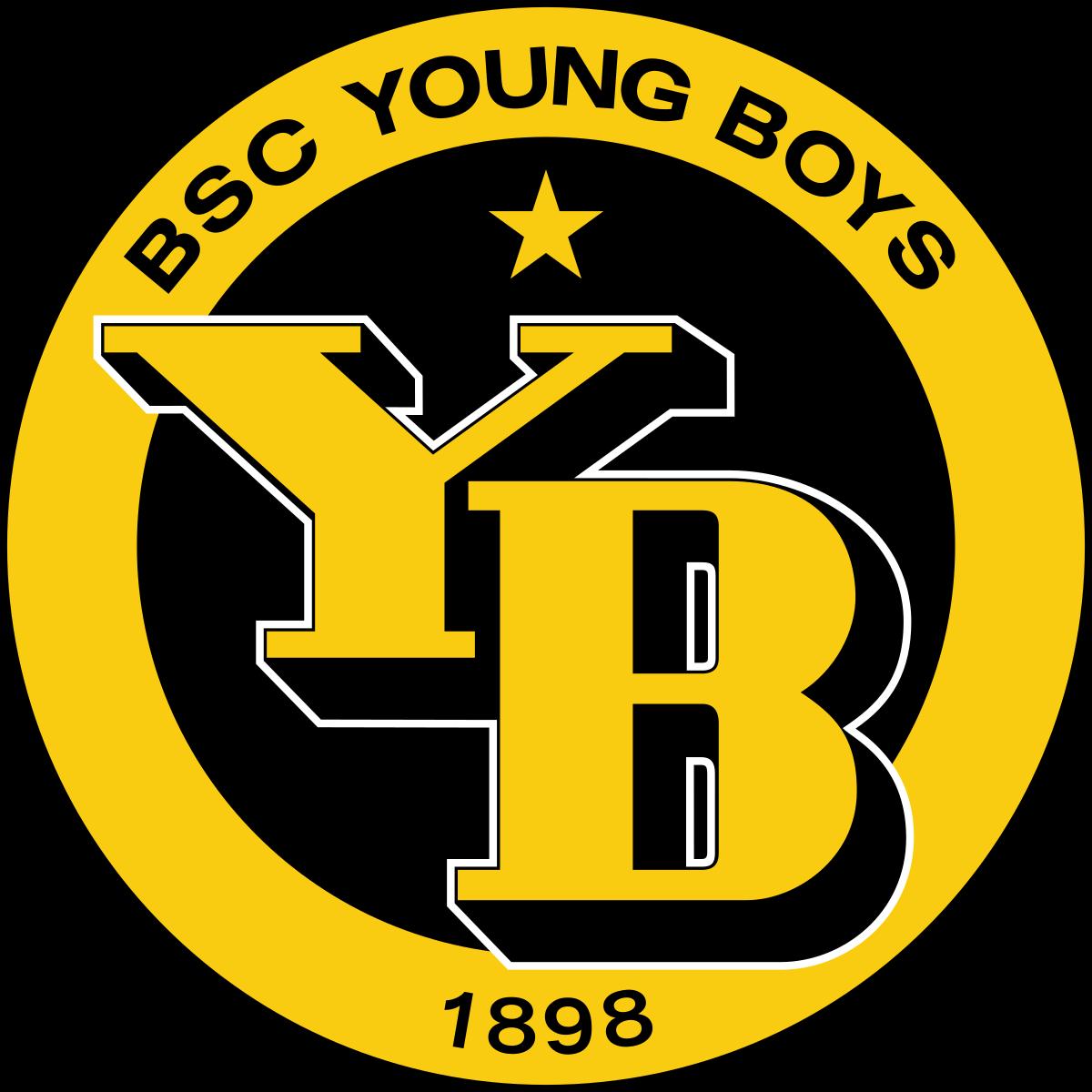 Young Boys Berceni