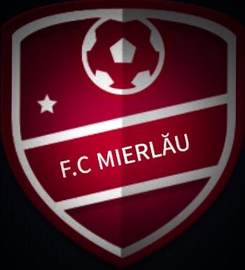 F.C Mierlău - Echipă
